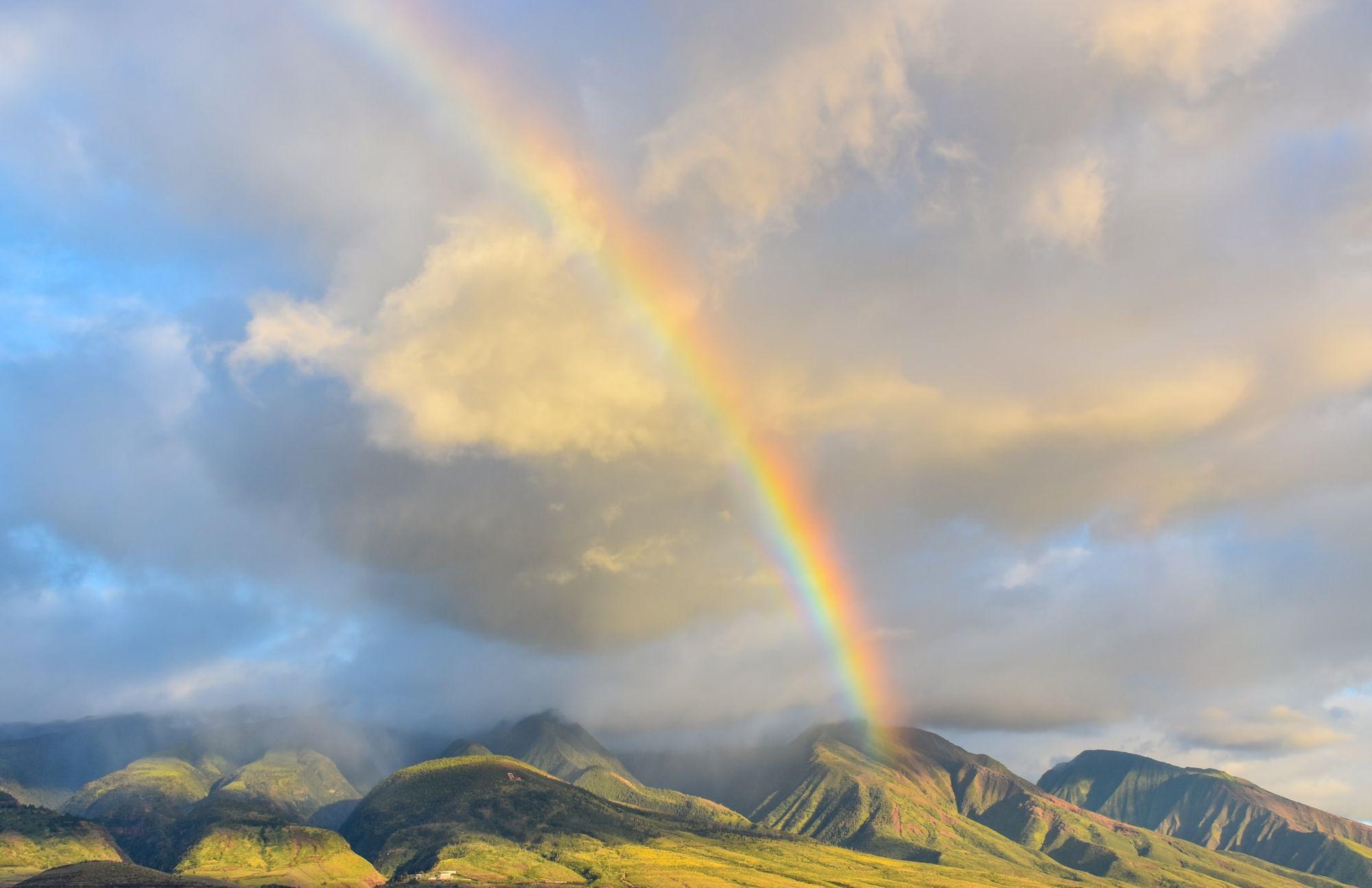 Hoeveel kleuren heeft een regenboog?